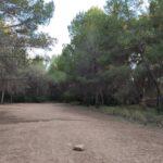 Zona de la Cañada