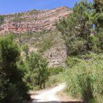 En gran parte de este segundo bucle iremos encajonados en el Cañón del Turia