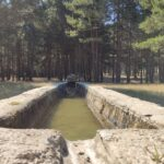 Fuente de la Muela
