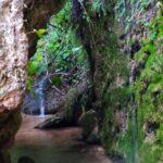 Rincón Junto a la Fuente Clara