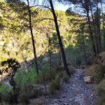 La senda comienza a descender hacia el rio Mijares