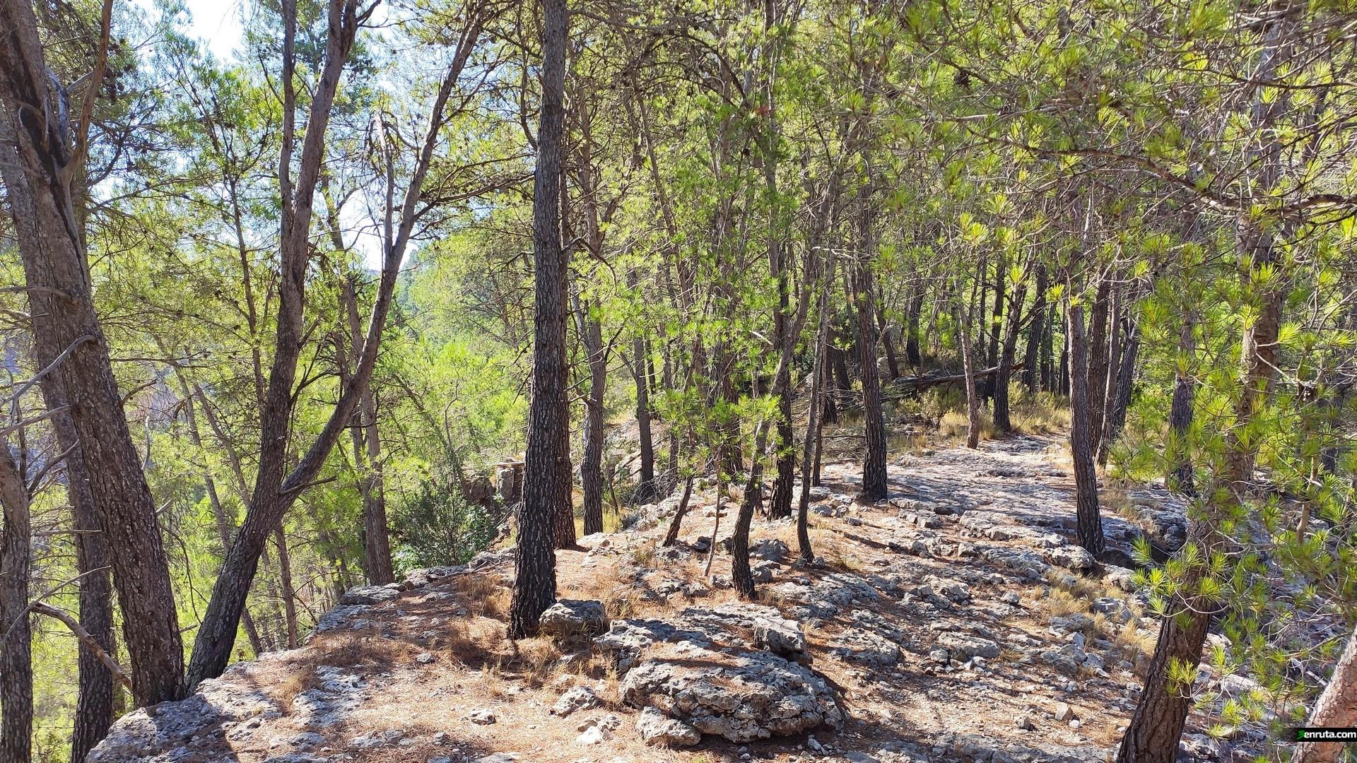 La ruta transcurre por un tramo rocoso