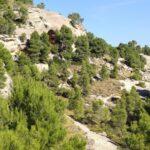 Desde el balcón de piedra ya vemos la Cueva de la Horadada
