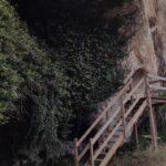 Escalera que nos permite acceder a las cuevas excavadas