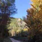 Pista hacia el Barranco de Bercolón