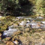 Rio Palancia cerca del Camping