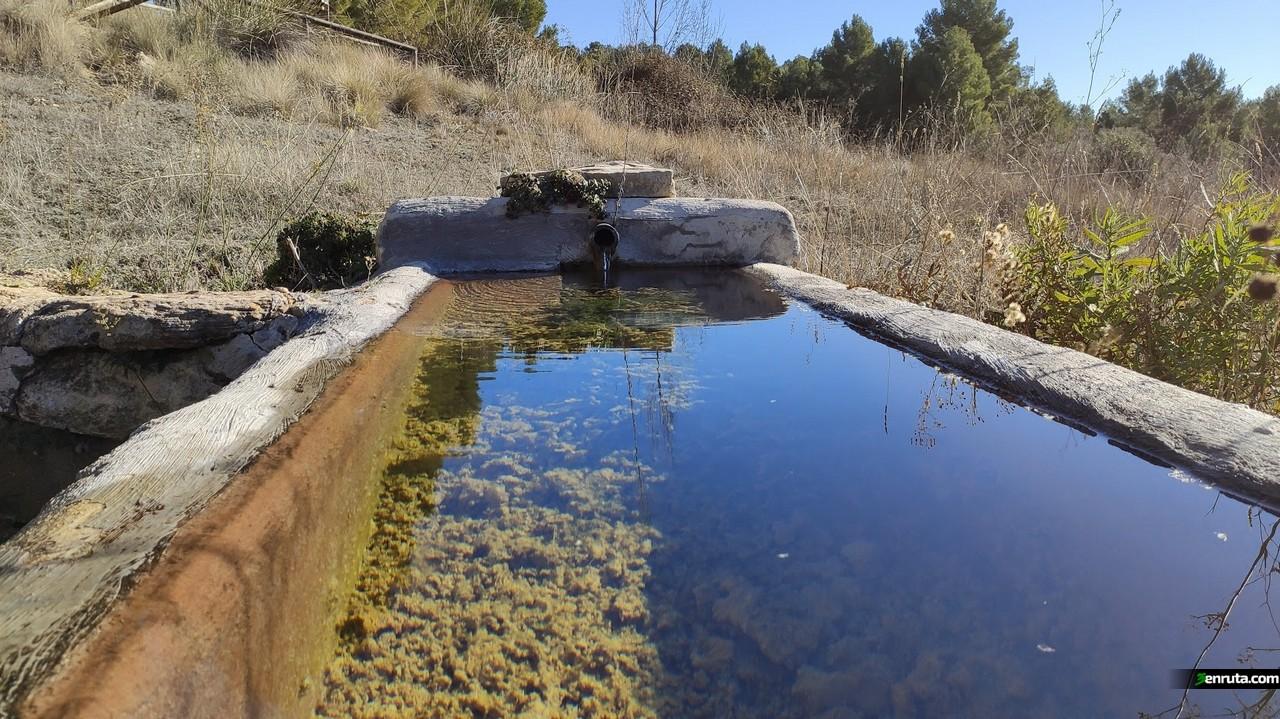 Fuente de la Oliva