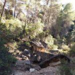Senda del Barranco del Moluengo