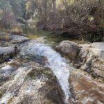 Caminaremos un buen tramo junto al Río Carbó