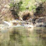 El Río Carbó