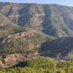Vistas desde la senda el estrecho del bosque de Millares