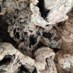 Detalle del techo de una de las cuevas de la Garita
