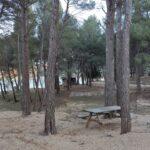 Área recreativa del embalse de Buseo en Chera