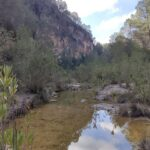 Cauce del Rio Grande