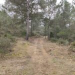Inicio del camino tras abandonar Cirat
