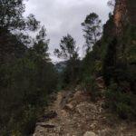 Senda por el barranco de Las Salinas