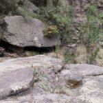 Fuente del Piojo de Cirat