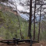 Subiendo por el Barranco de la Cueva Honda
