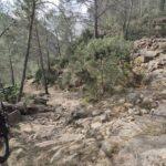 Senda de herradura en el barranco de las Salinas