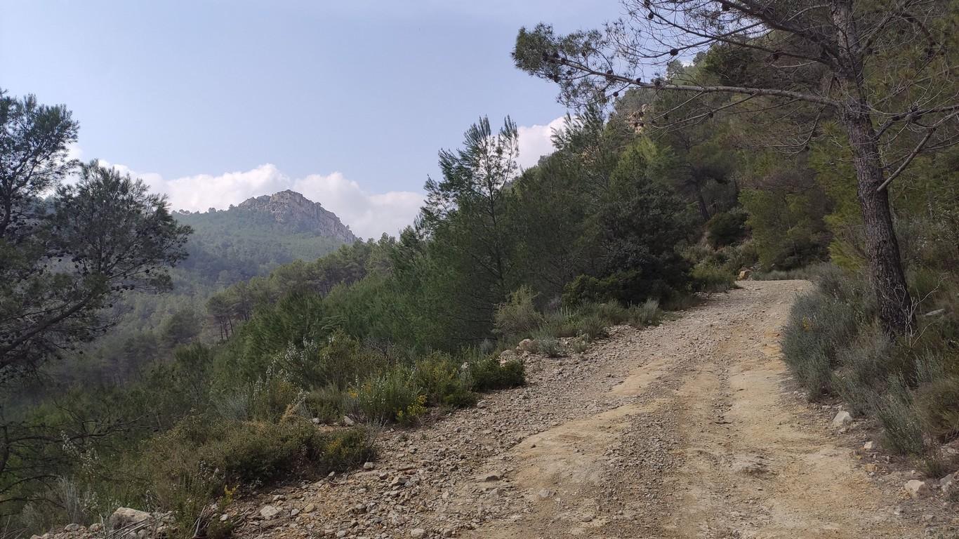 Camino de la Tejería