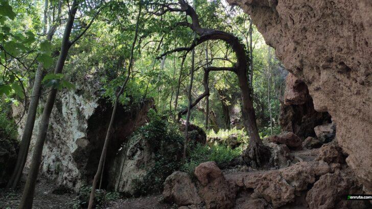 El paraje natural municipal de la Cabrentà de Estubeny