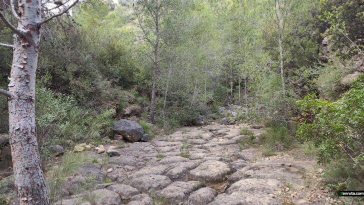 Ruta del Palmeral de Pedralba
