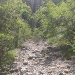 Rambla que nos lleva hacia los estrechos del Cascajar