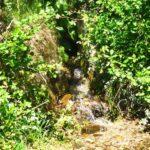 Nacimiento del rio Palancia
